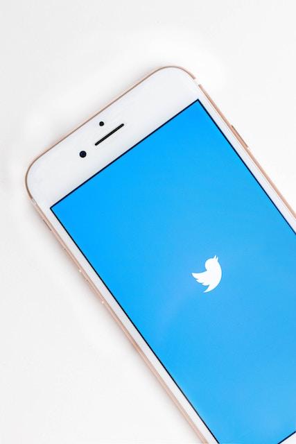 起業するならTwitterは必須!【個人の時代が到来】